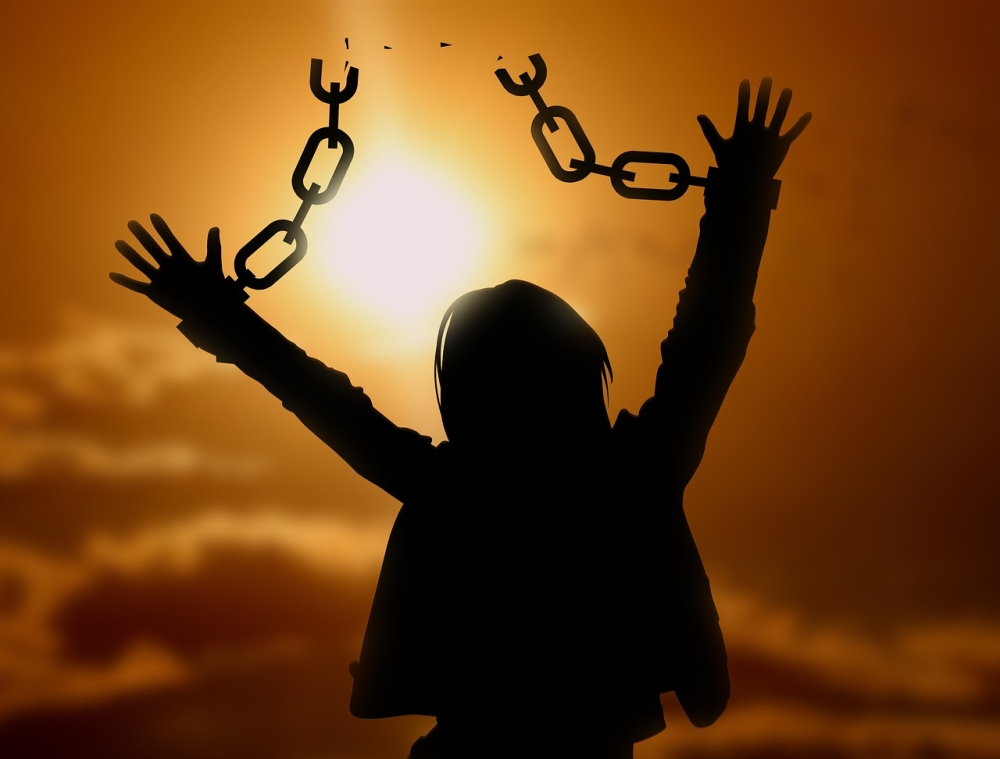 coach4success online e-learning course freedom from manipulation